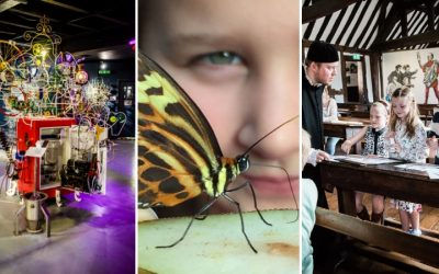 Joint School Discounts with Stratford Butterfly Farm + Shakespeare's Schoolroom & Guildhall